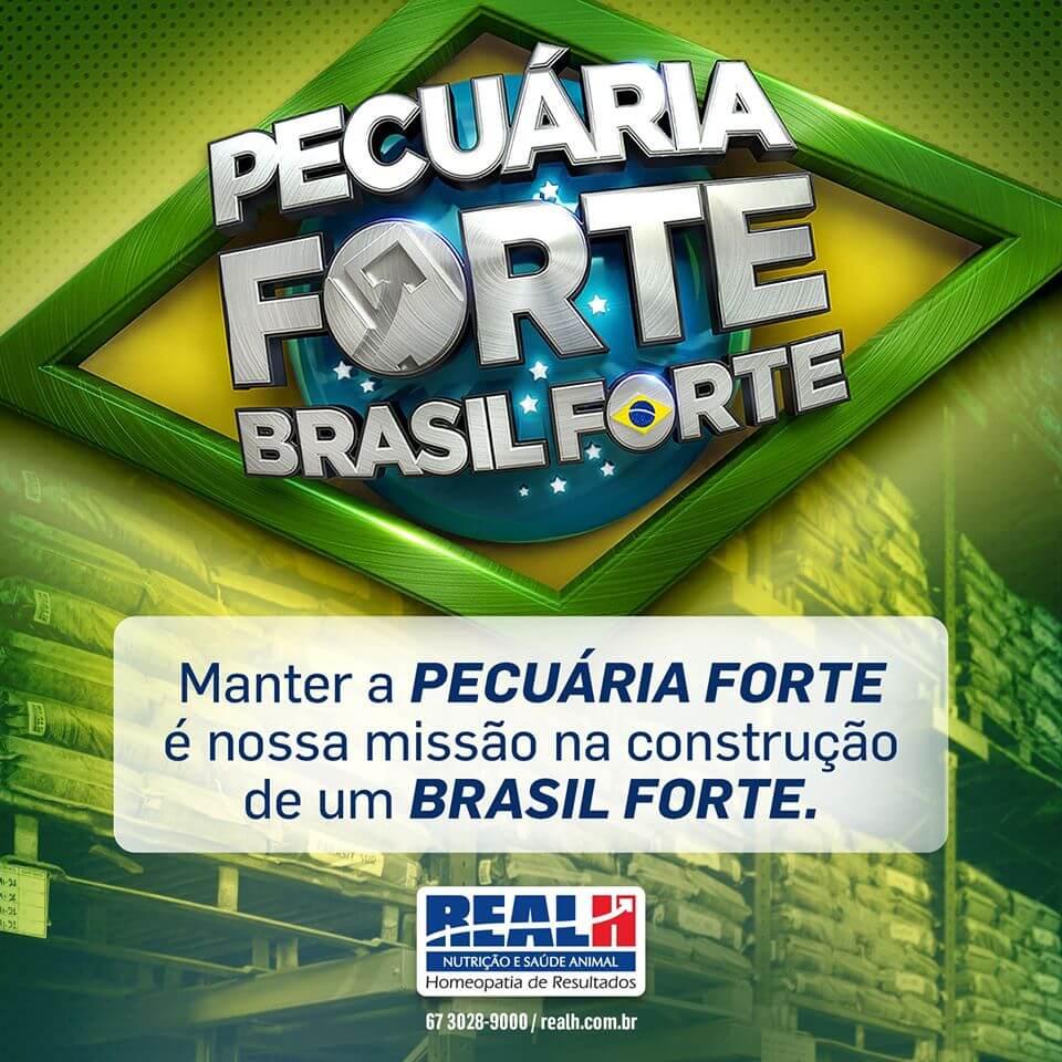 Pecuária Forte Brasil Forte