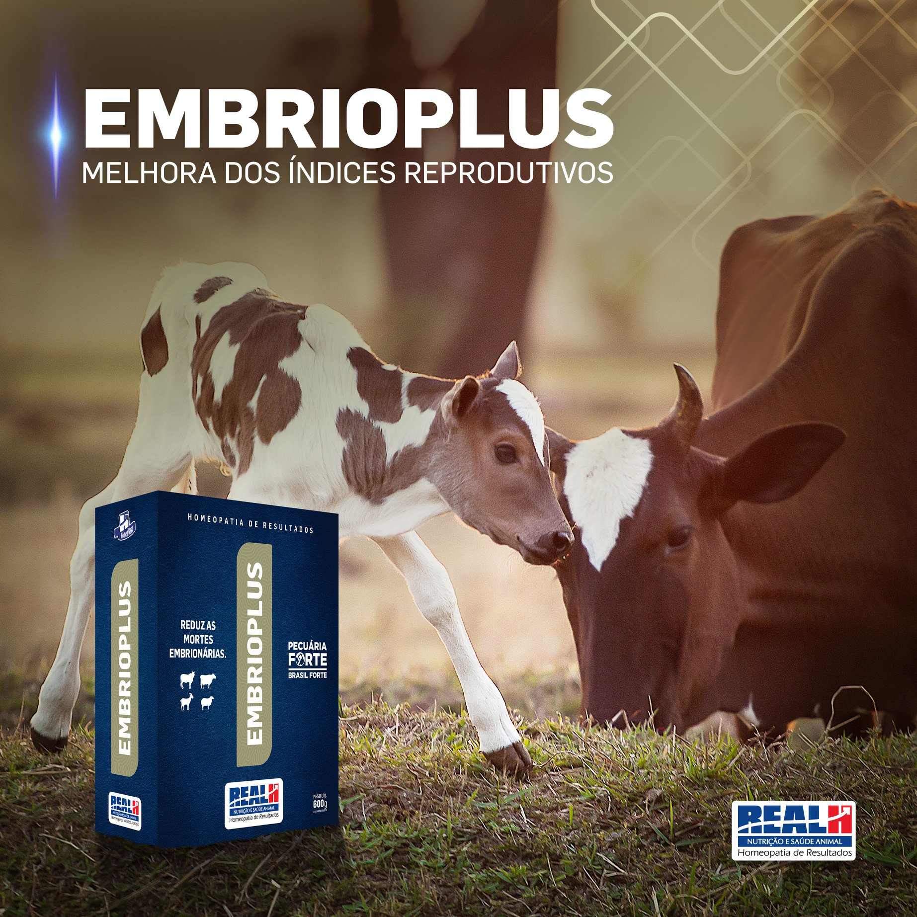 Embrioplus Real H